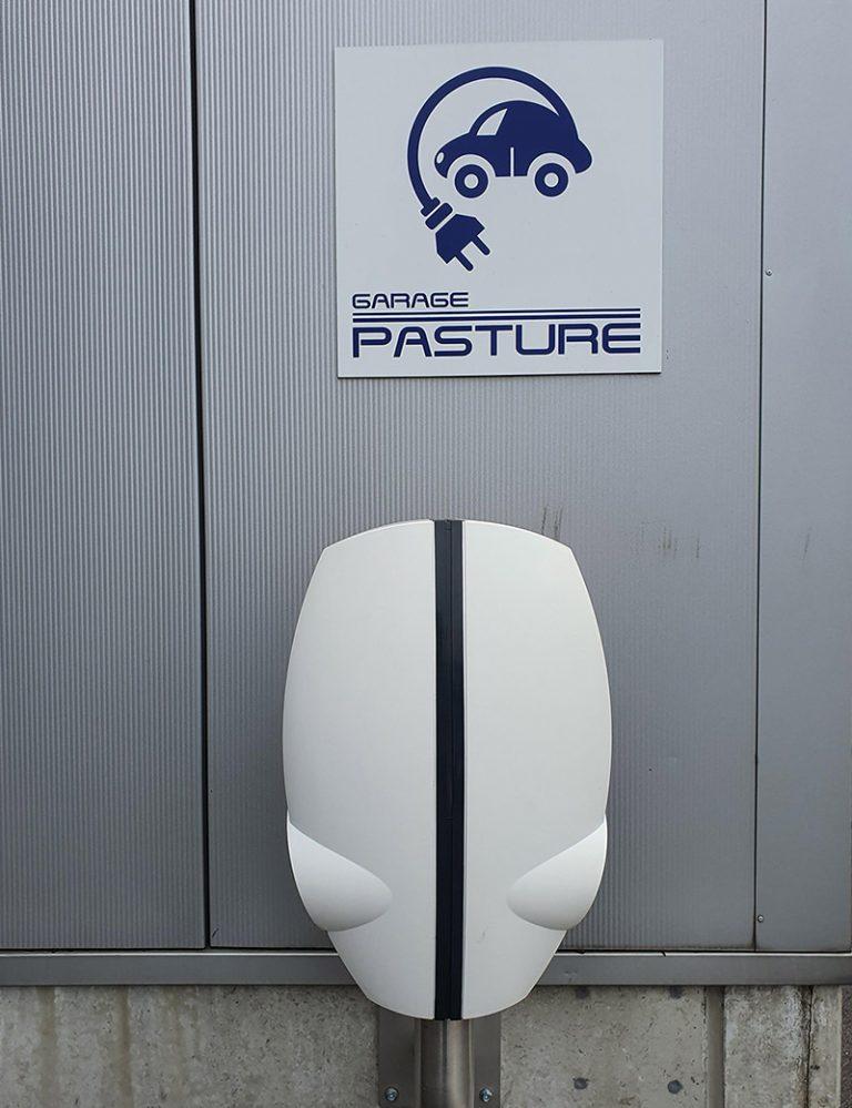 pasture-borne-recharge-1