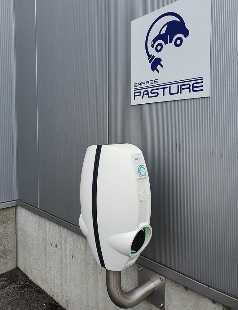 pasture-borne-recharge-2